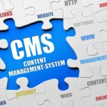 CONTENT MANAGEMENT SERVICES